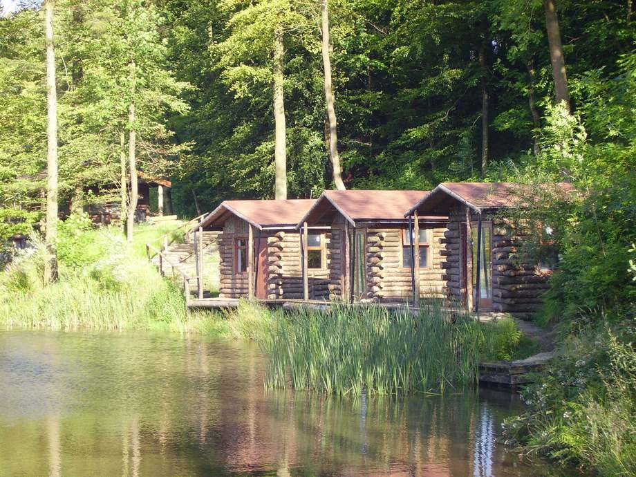 Lake of the woods pinewood restaurant giftshop cabins for Fishing cabin rentals